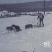 [1974 North American Sled Dog Championships]